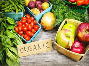 Organic Products Manufacturers Exporters Suppliers in India
