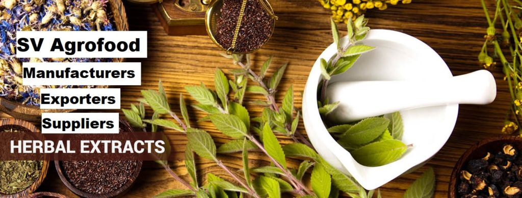 Herbal Extracts Manufacturers Exporters Suppliers in India