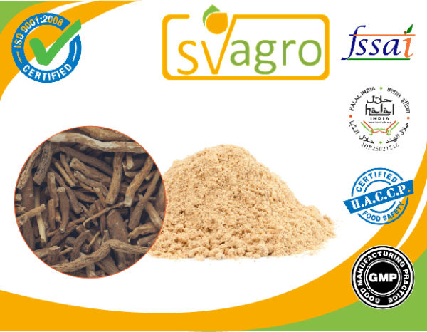 Ginseng Ashwagandha Extract Powder manufacturers exporters suppliers in India