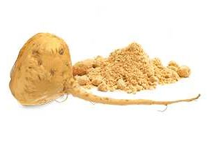 Maca Root Powder manufacturers exporters suppliers in India
