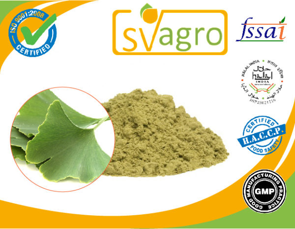 Ginkgo Biloba Extract manufacturers exporters suppliers in India